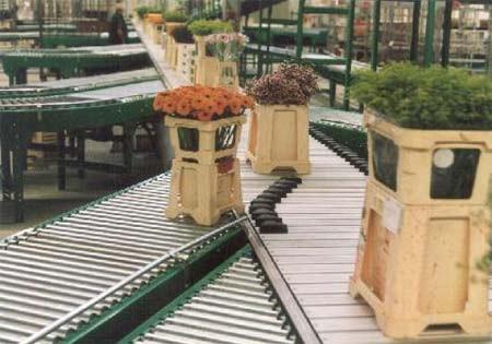 Heemskerk Flowers sorteert emmers met Van Riet Shoesorter