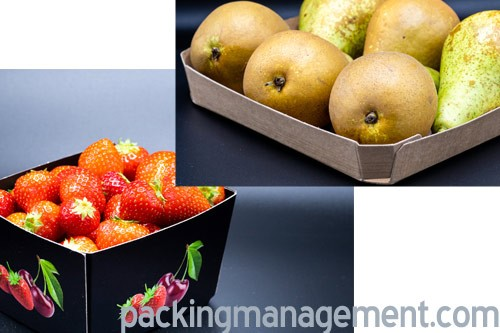 Solidus cardboard trays for fruit